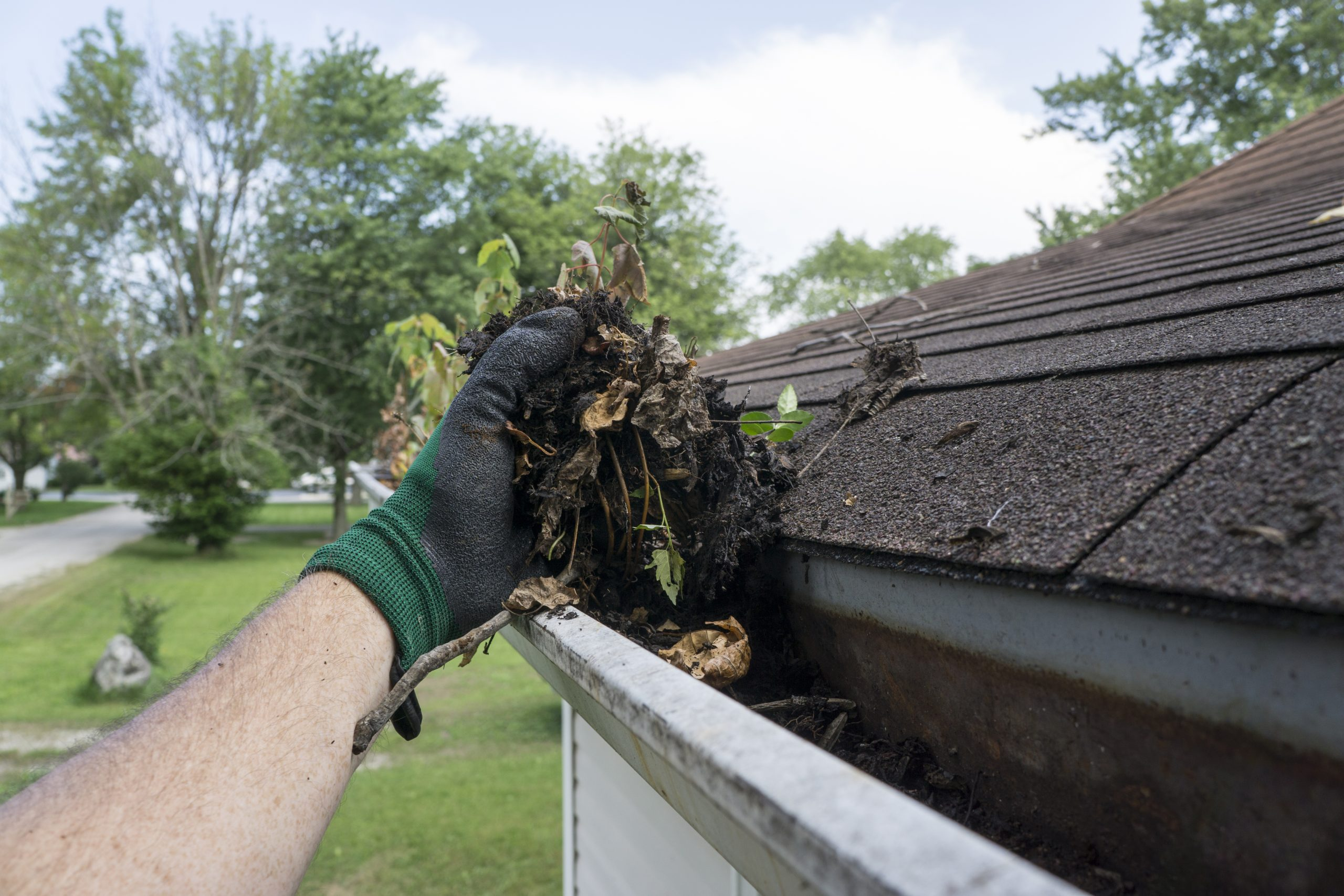 professional gutter cleaning service edwardsville maryville glen carbon troy illinois il